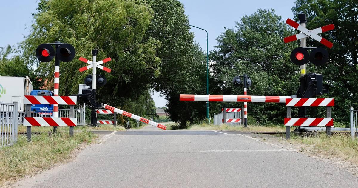 Treinverkeer tussen Boxmeer en Cuijk ligt plat door aangereden honden.