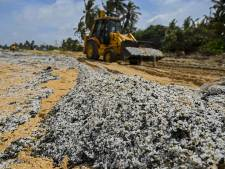 """Les plages sri-lankaises menacées par des tonnes de plastique: """"On n'en voit pas la fin"""""""