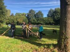 Op de 'Kwispelweide' in Diepenheim zijn alle honden en hun baasjes in Hof van Twente welkom