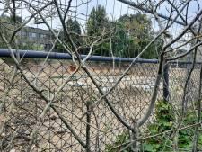 Bouw van woningen op plek Tropische Kas gestart; plannen Dreijen nog niet klaar
