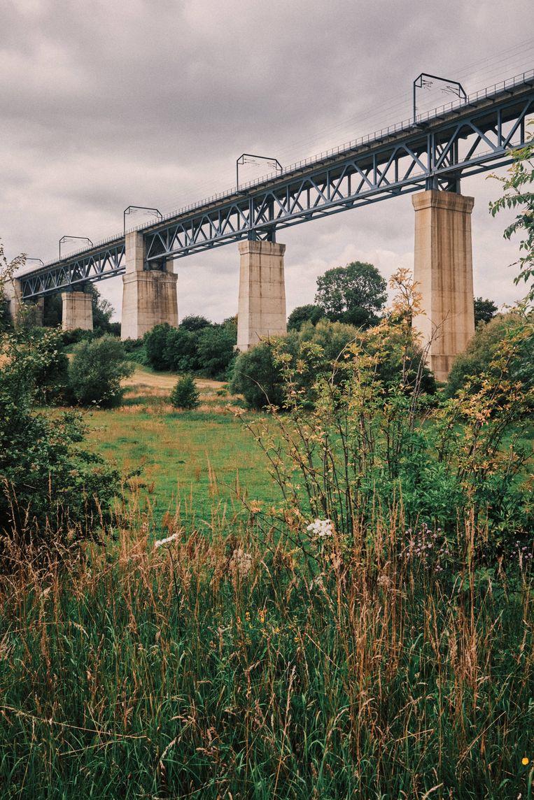 De brug van Moresnet, bijna 1.200 meter lang, is een kolos die boven weilanden, bossen en het riviertje de Geul torent. Maar echt veel treinen zie je er niet meer passeren. Beeld Thomas Sweertvaegher