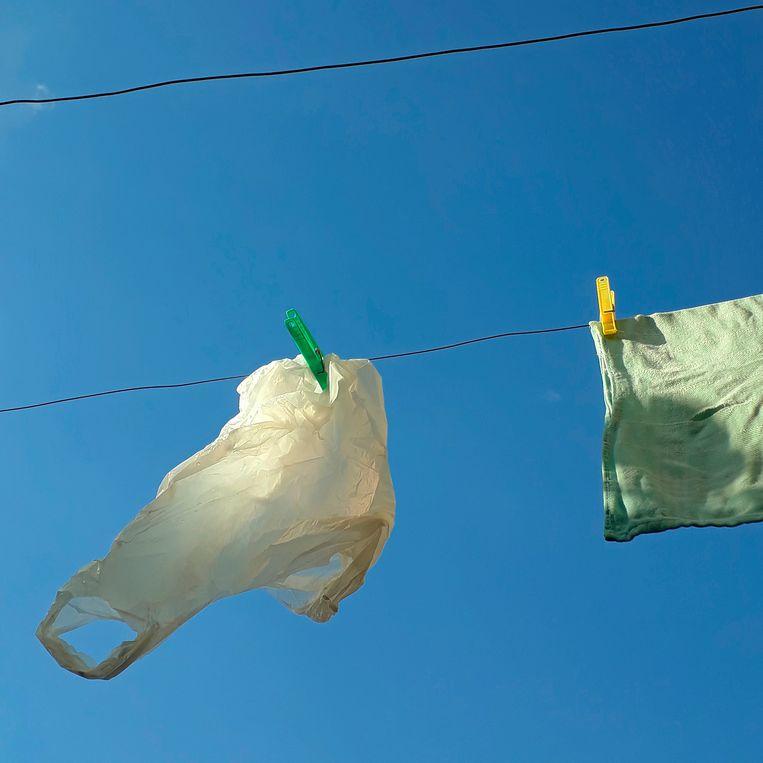 Een plastic zakje aan de waslijn, om de kauwen weg te houden bij het merelnest. Beeld Desiree van den Bogaard