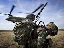 Spectaculair: helikopters en losse flodders in weiland De Haere bij Olst