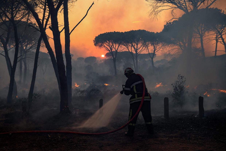 Een Franse brandweerman bestrijdt het vuur bij Gonfaron, in het zuidelijke departement Var. Beeld AFP