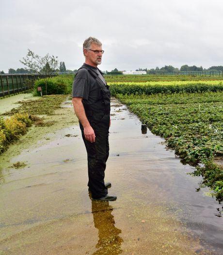 Plan voor laten vollopen polders bij Boskoop laat op zich wachten