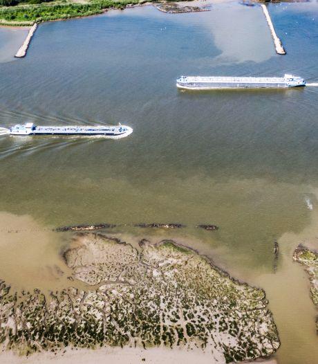 Deze maatregelen treft het waterschap tegen de aanhoudende droogte in de Hoeksche Waard