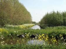 Bruggen Abtwoudse Bos afgesloten