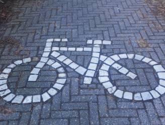 Vlaanderen telt straks tachtig fietssnelwegen