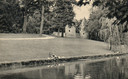 Eendjes aan de waterkant in Plantsoen-Zuid, met rechts Monnikendam. Kort na uitgifte van deze ansichtkaart in 1958 werd de singel gedempt. De Oostbuitensingel, voorbij Monnikendam, is er gelukkig nog wel.