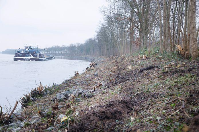 Een deel van het Maas-Waalkanaal na de grootschalige snoeiwerkzaamheden.