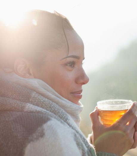 Top 4 des thés pour booster notre organisme à l'approche de l'hiver