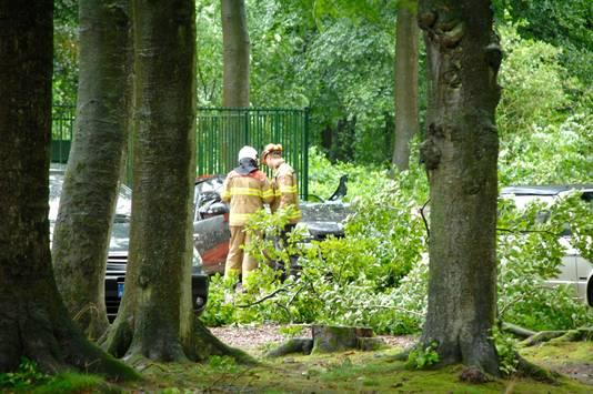 In Wolfheze kwam een man om het leven toen een boom op zijn auto viel.