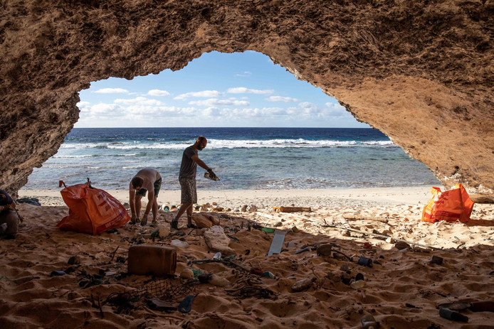 Ramassage de déchets, en juin, sur une plage de l'île Henderson