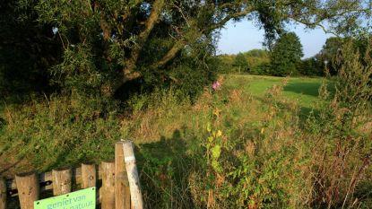 Nieuwe toegangsweg maakt Barebeekvalleiwandeling toegankelijker