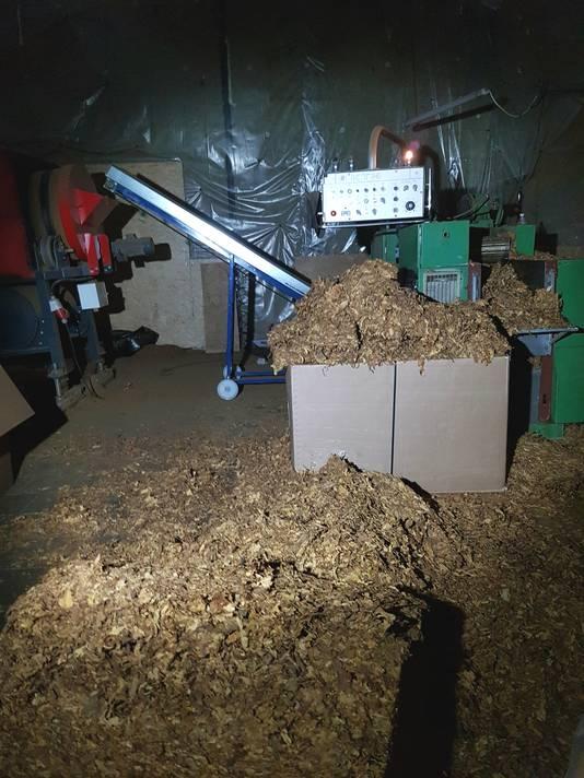 Illegale tabak in een oude loods in Dongen.