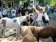 Tropische hitte dwingt paardenmarkt Alblasserdam tot maatregelen