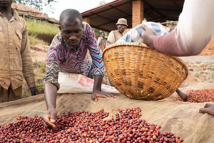 In Burundi zijn het land, vee en de goederen vaak in het bezit van de mannen.