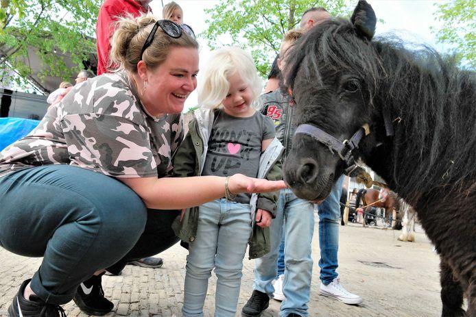 De paarden op maandag zijn nog altijd heel populair.