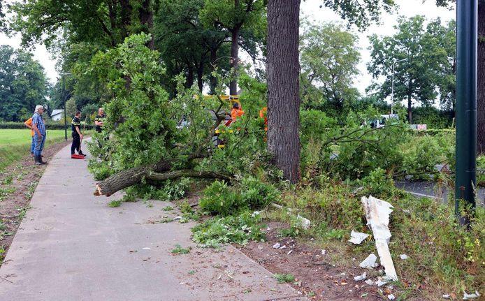 Een van de bomen werd dusdanig geraakt dat de top van de boom afbrak en op het naastgelegen fietspad terechtkwam.