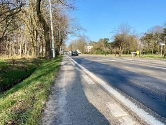 Antwerpsesteenweg krijgt nieuwe laag asfalt: twee weken beperkte verkeershinder