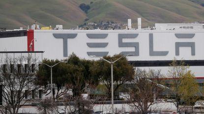 Tesla-fabriek in Californië mag voorlopig niet open