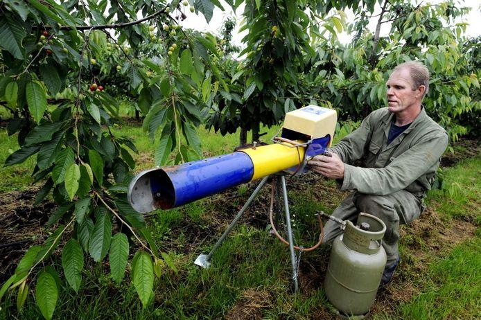 Bedrijfsleider Piet Thijssen van De Braacken demonstreert een gaskanon waarmee vogels tussen de fruitbomen worden verjaagd. foto Marie-Thérèse Kierkels/PVE