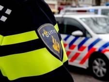 Politie vindt geen wapens, maar wel andere illegale spullen tijdens controle van 200 auto's in Maasdriel