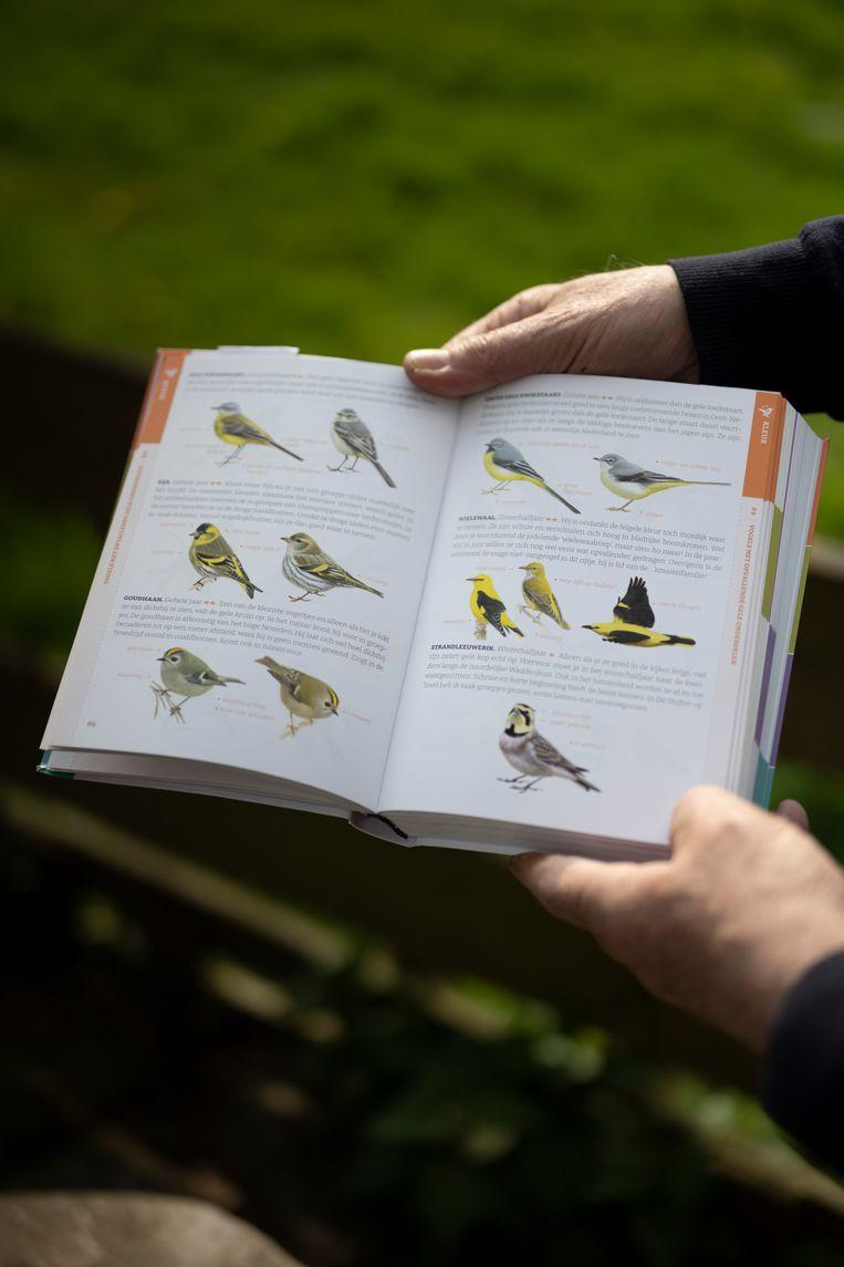 Enkele pagina's uit het vogelboek 'De gewiekste vogelgids', van vogelkenner Nico de Haan. Beeld Bram Petraeus
