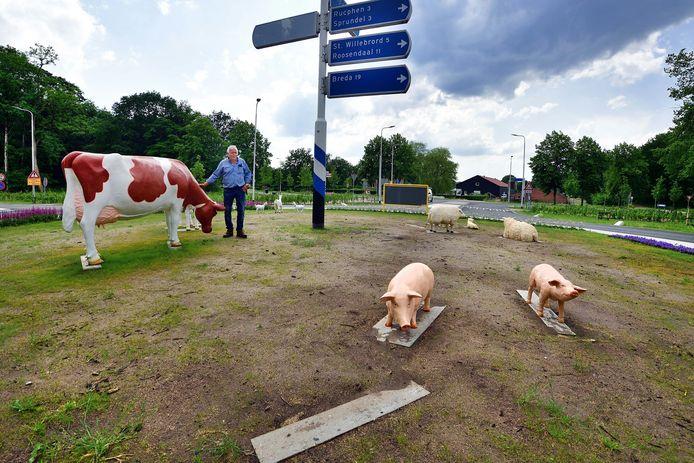 Rotondekunst van speelboerderij De Scherpenberg. Eigenaar Marcel Sommers staat bij de koe. Op de kale plaat ontbreekt een derde varkentje. Het is gestolen net als een lammetje.