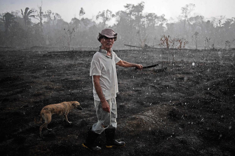 Een landbouwer en een hond, veel meer leven is er niet te zien na een verwoestende bosbrand bij Porto Velho. Beeld AFP