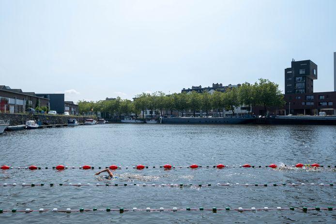 MECHELEN De zwemzone aan het Keerdok wordt in gebruik genomen door Racing Swim Club Mechelen