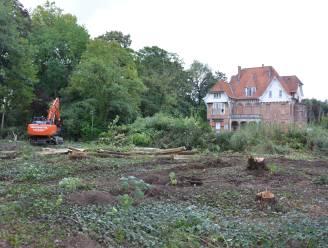 """Buurtbewoners Groendreef en Torenstraat schrijven open brief naar gemeenteraad: """"Niet onze taak om roofbouw in stad te verhinderen"""""""