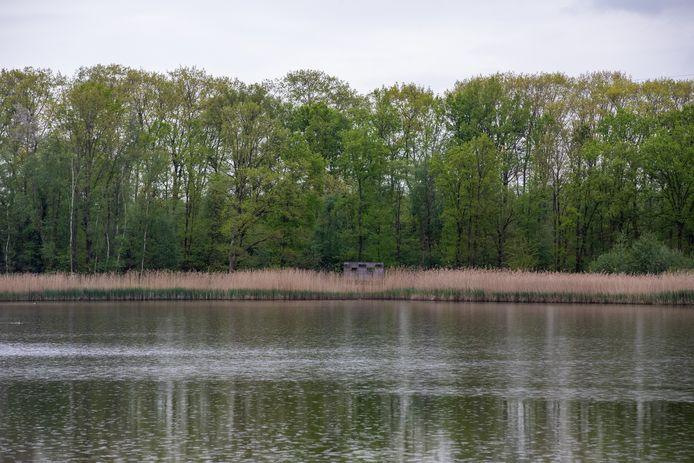 Illustratiebeeld van bos de Maten in Diepenbeek, één van de vele stukjes groen in de gemeente.