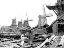 Papegat Dordrecht: ooit een molenparadijs, nu terrein voor Qbuzz