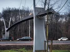 Haagse eekhoorns laten brug van 1,5 ton links liggen