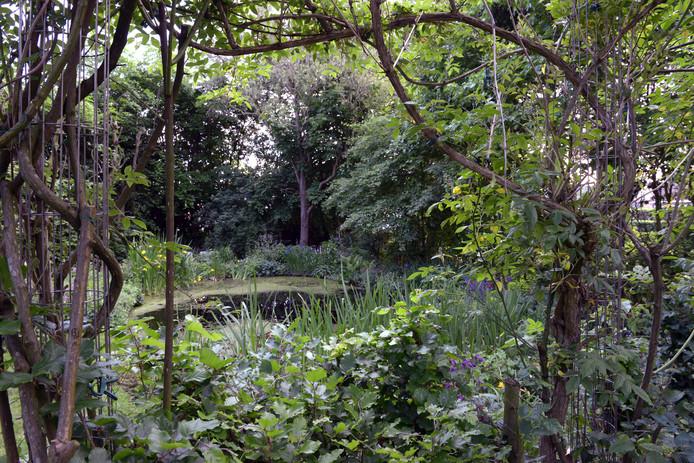 Nee, dit is niet de tuin van Henny Haggeman.