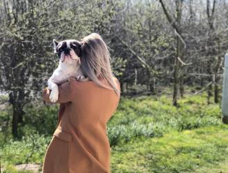 """Verpleegster (29) van COVID-afdeling brutaal aangevallen in duinen tijdens wandeling met hond: """"Gezin keek toe alsof ze geweld doodnormaal vonden"""""""