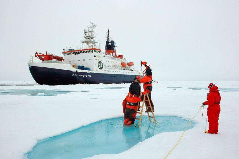 Medewerkers van het Alfred Wegener Institute for Polar and Marine Research (AWI) meten de ijsdikte in de Noordelijke IJszee. Beeld epa