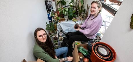 Deze vrouwen lappen je verlepte kamerplanten weer op: 'Hier staan alle kneusjes'