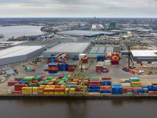 Vele kleintjes maken De Rietvelden groot: 'Over jaar een van de duurzaamste industriële plekken in het land'