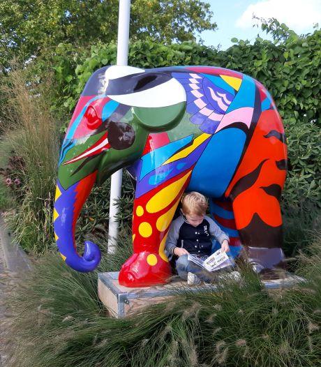 Elephant Parade slaat vleugels uit in Noordoost-Twente: 'Fietsroute langer, dus maken we lussen'