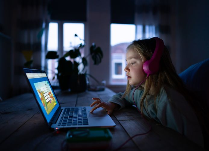 Een leerling van 8 jaar maakt taalopdrachten via internet.