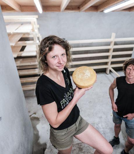 Moderne kaasmakerij in Halle gaat bergkaas produceren: 'We hebben 'm nu te pakken'