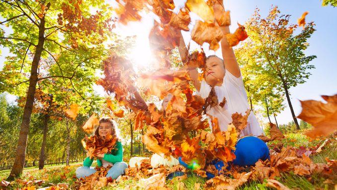 Met 24,4 graden beleven we de warmste 15 oktober ooit