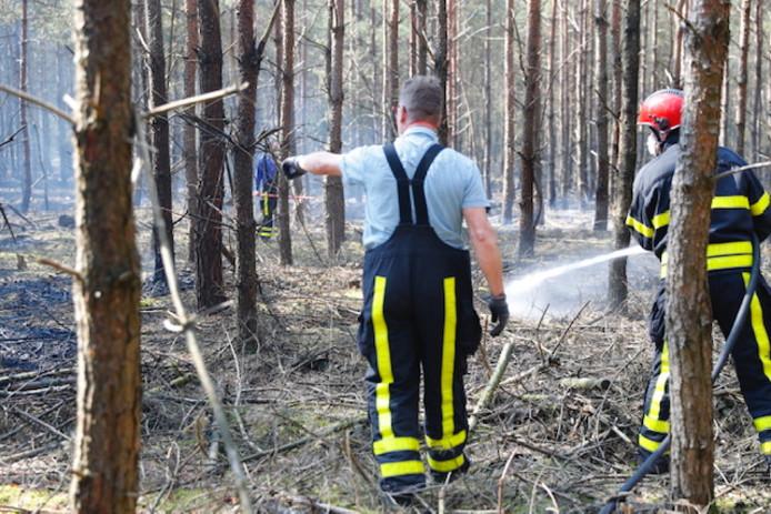 Natuurbrand bij landgoed De Utrecht