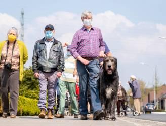"""'Kwispelstappers' bevorderen sociaal contact door te wandelen met viervoeters: """"Een keer per week op stap met eenzaam of ouder persoon"""""""