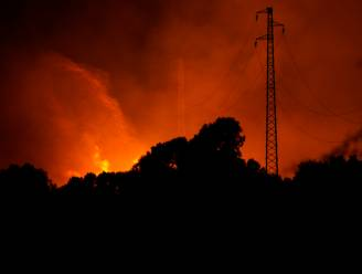 EU stuurt vliegtuigen om bosbranden op Sardinië te helpen bestrijden