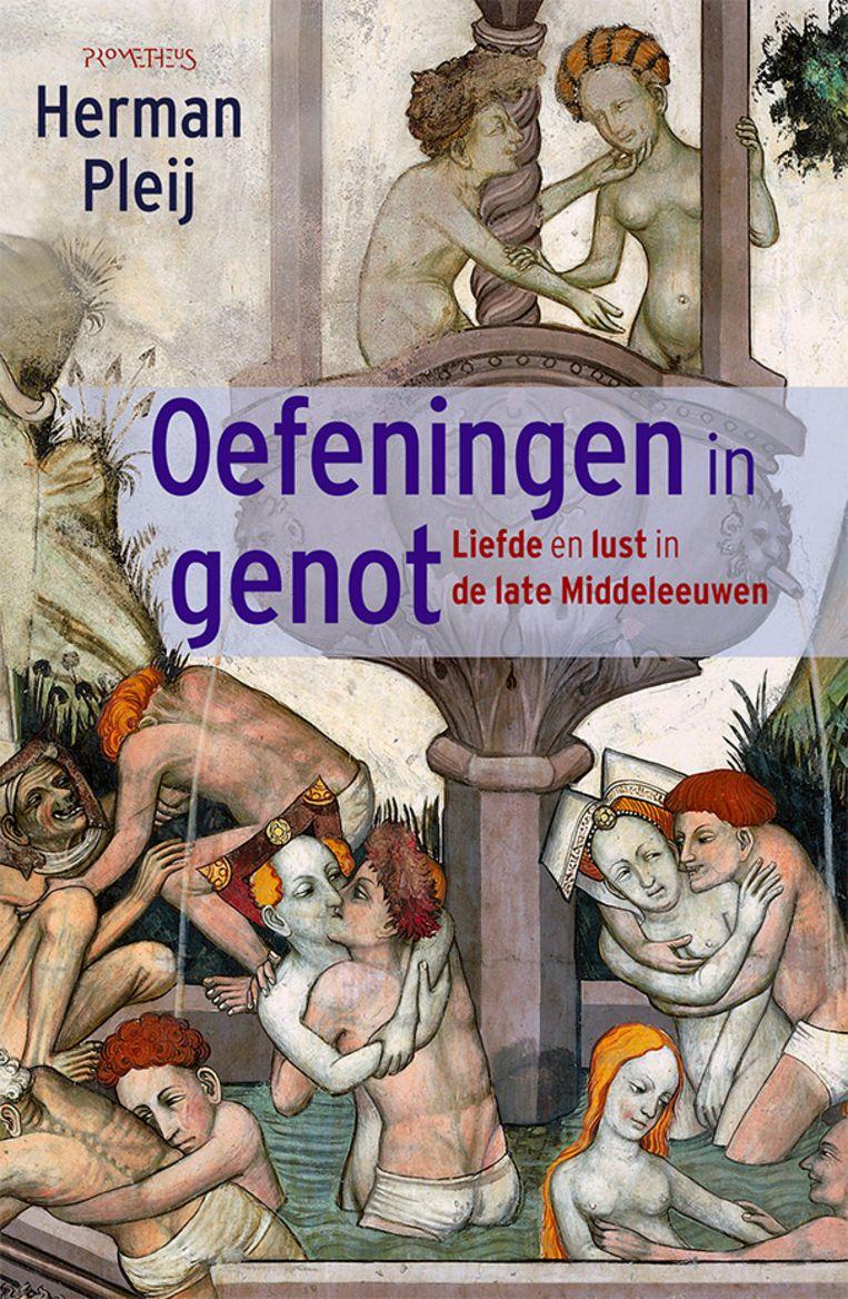 Herman Pleij, 'Oefeningen in genot. Liefde en lust in de late middeleeuwen', Prometheus, 434 p., 29,99 euro. Beeld RV
