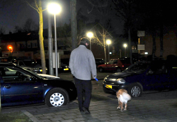 Straatlantaarns in Leerdam wachten op onderhoud.