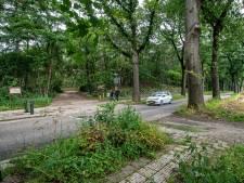 Het was even schrikken, maar massale bomenkap langs Sint Walrickweg blijft uit